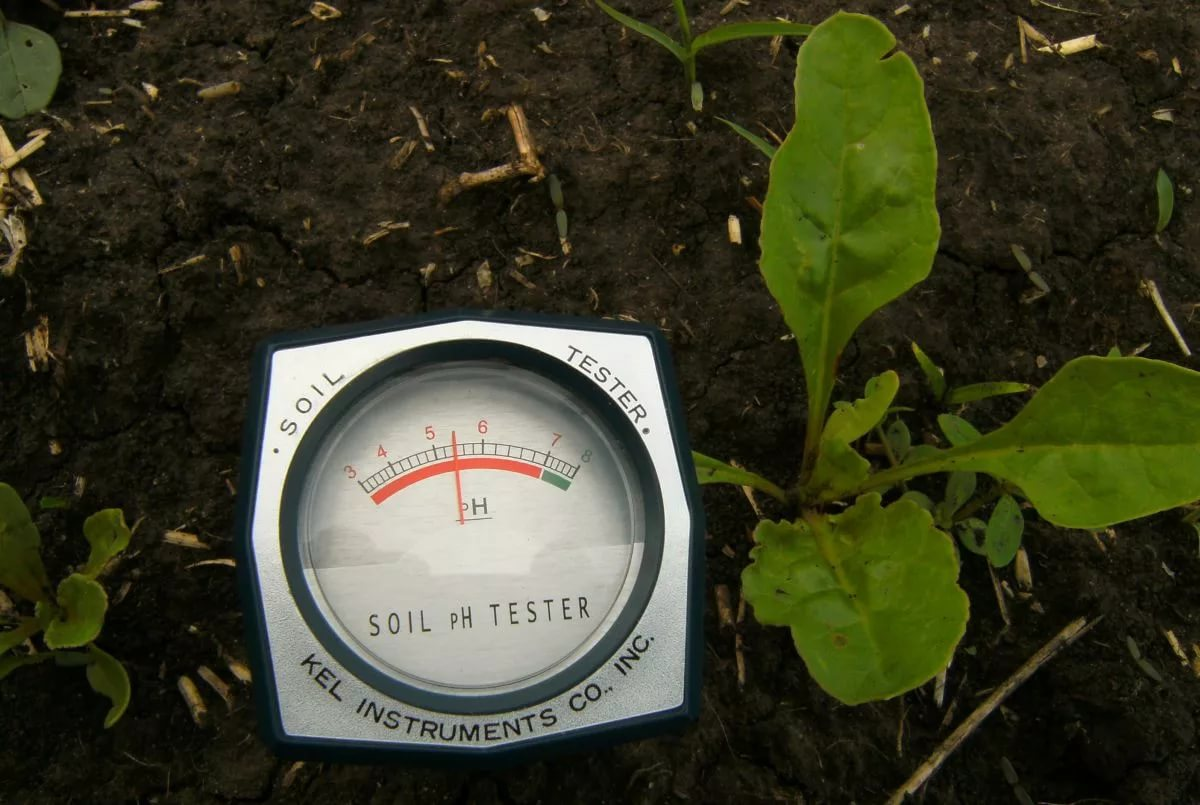 Soil pH / Soil Acidity