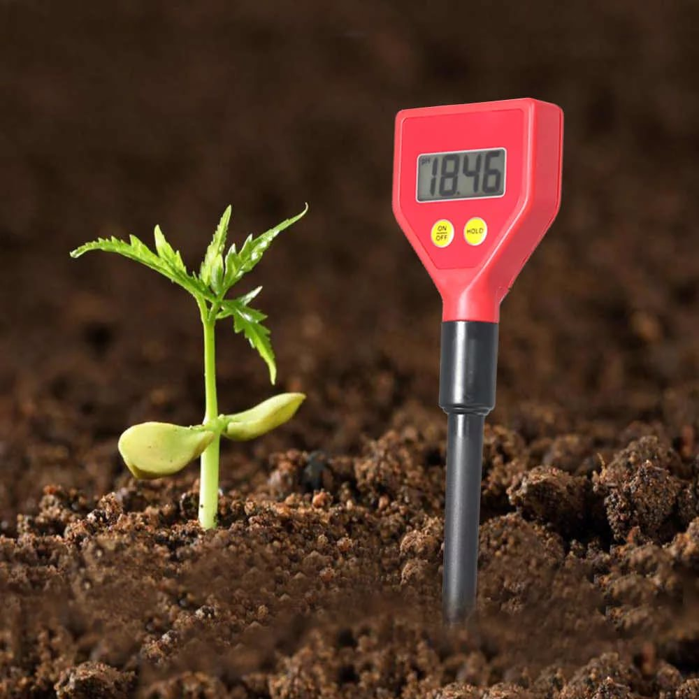 Raising Soil Ph