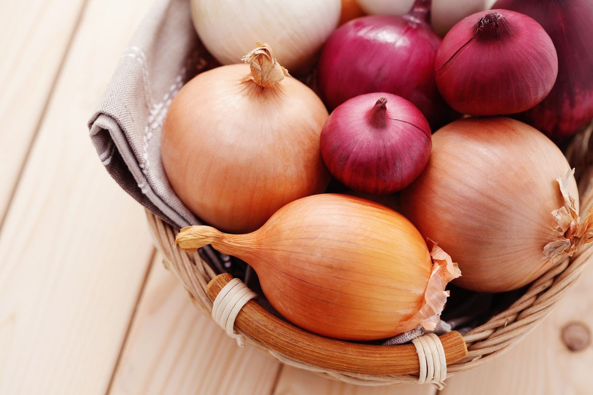 Onion is a vegetable